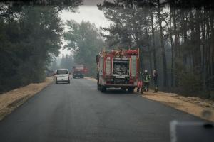 Лесные пожары на Луганщине окончательно ликвидировали
