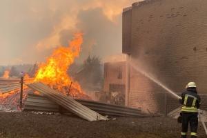 Более 1,6 тысячи человек и 200 единиц техники: на Луганщине тушат лесные пожары