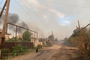 Пожары на Луганщине: продолжается тушение очагов тления в двух лесничествах