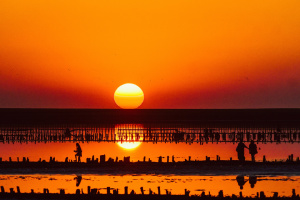 Новий туристичний маршрут об'єднає Одесу, Миколаїв і Херсон
