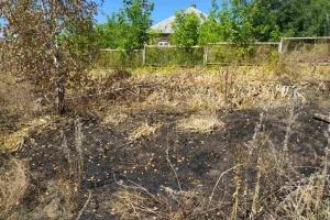На Харківщині під час пожежі сухої трави загинула жінка