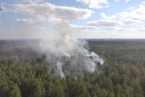 Пожежі на Луганщині: триває гасіння трьох осередків тління