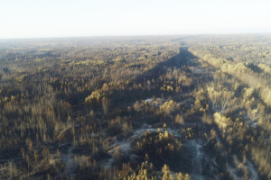 Тушение лесного пожара на Луганщине продолжается, открытого огня нет - ГСЧС
