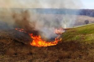 На Харківщині за добу сталися 12 пожеж у природних екосистемах