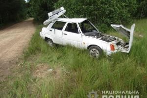 На Житомирщине авто слетело с дороги: двое взрослых и трое детей - в реанимации