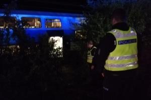 У Чехії зіткнулися два потяги: один загиблий, десятки постраждалих