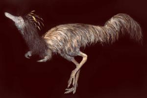 В США обнаружили лапы динозавра с одним когтем
