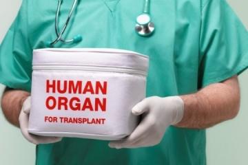 Desarrollo del trasplante de órganos en Ucrania puede convertirse en parte de la reforma médica