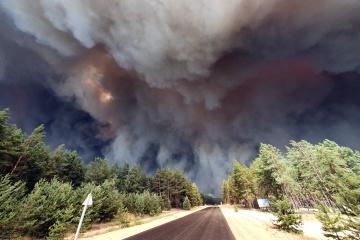 ルハンシク州にて大型森林火災 死者7名