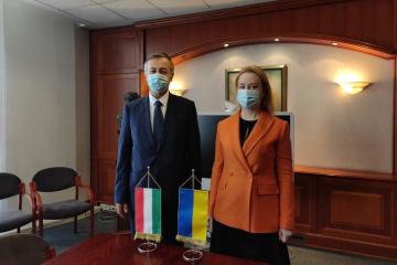 Ko-Vorsitzende Ukrainisch-Ungarischer Kommission für nationale Minderheiten auf Zusammenarbeit eingestellt
