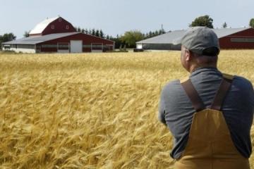 Economía: Podría haber hasta 10.000 granjas familiares para 2024