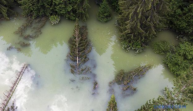 Прикарпаття просить додаткові 350 мільйонів на ліквідацію наслідків повені