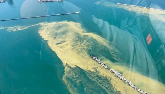 Море возле Одессы