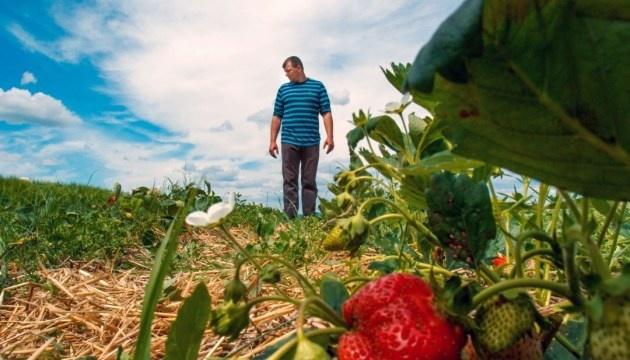 Minister Ardanowski: Polish farmers interested in Ukrainian workers