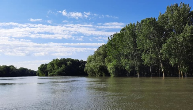 В Одесской области уровень воды в Днестре достиг опасной отметки