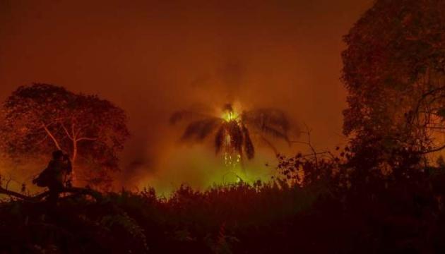 Темпи поширення пожеж в Амазонії побили 13-річний рекорд