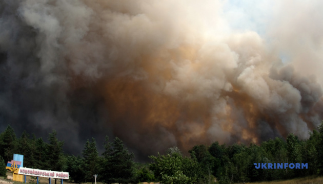 Лесной пожар на Луганщине: один человек погиб, девять – в больнице