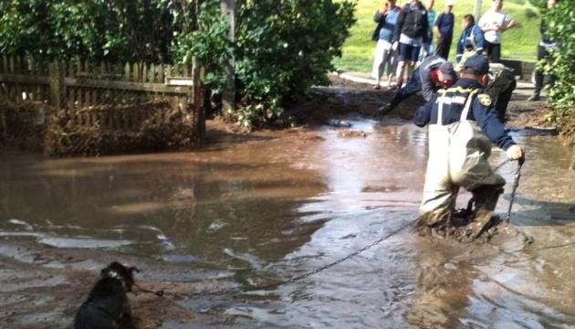 Зливи і шквали накрили Одещину: повалені понад 100 дерев, постраждали люди
