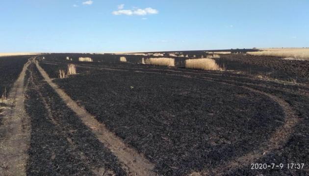На Харківщині згоріли 10 гектарів пшениці