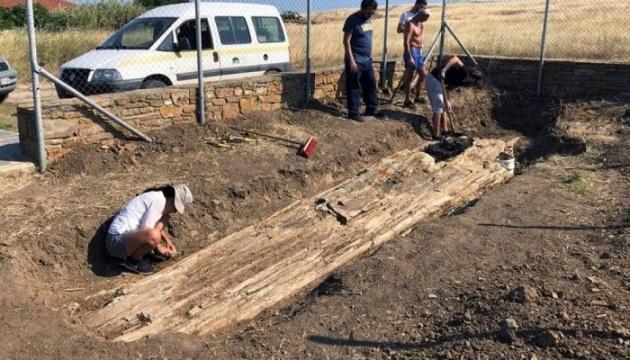 Дерево віком 20 млн років розкопали у Греції
