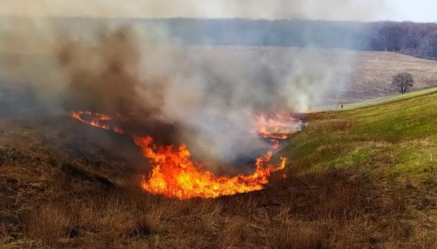 На Луганщині знову горіла трава, пожежу ліквідували