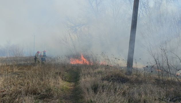 В Краматорске сгорели 8 гектаров ландшафтного парка