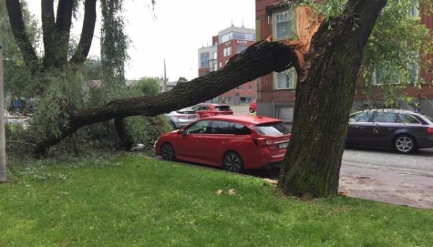 Ураган в Эстонии оставил без света 34 тысячи домов