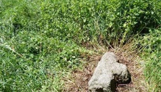 В Житомирской области нашли редкий каменный крест XVII-XVIII века
