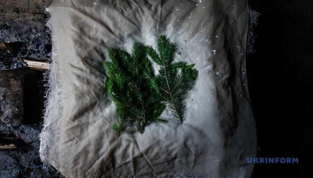Гуцульська бриндзя: як народжується легендарний сир карпатських гір