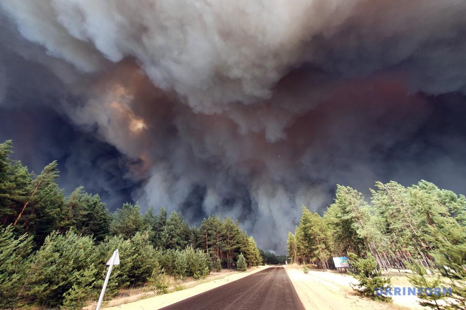 ルハンシク州森林部にて大型火災発生 写真:オレクシー・コヴァリョウ/ウクルインフォルム