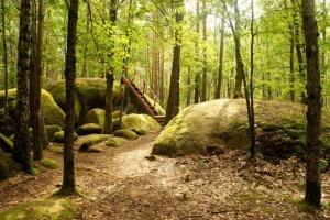 Житомирщина предлагает туристам «Единение с природой»