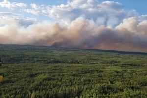 Лісова пожежа упритул наближається до міста на півночі Канади