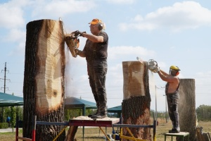 На Вінниччині влаштують фестиваль дерев'яної скульптури