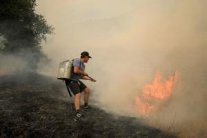 Пожежі у Каліфорнії: під Лос-Анджелесом почали евакуацію