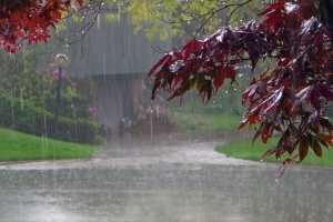 """Дощі """"остудять"""" Україну - завтра вдень до +17°"""