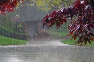 "Дожди ""остудят"" Украину - завтра днем до +17°"