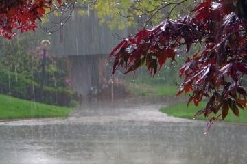 Météo : La pluie s'installe sur tout le territoire ukrainien