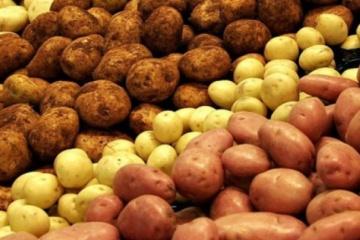 Ukraine among world's top three potato producing countries