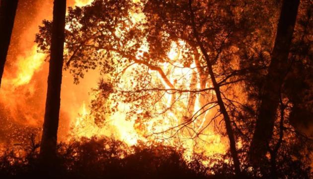 Лісові пожежі на півдні Франції знищили 800 гектарів, сотні людей евакуювали