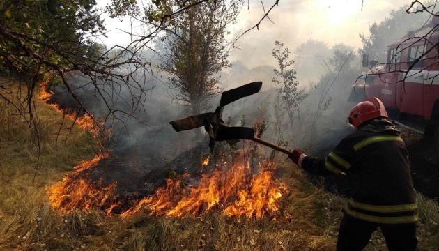 На Луганщині вирує масштабна пожежа