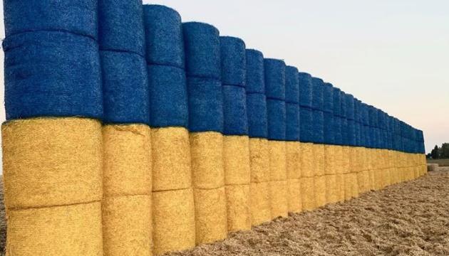 На Тернопільщині із тюків соломи виклали велетенський прапор України