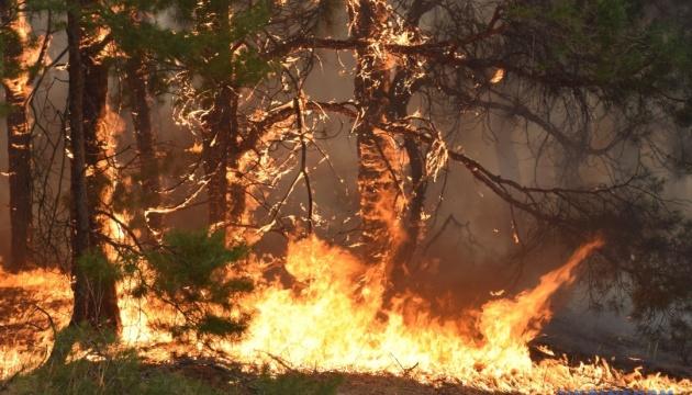 На Сардинии эвакуировали сотни туристов из-за лесного пожара