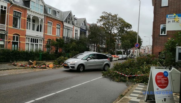 Поломанные деревья и авто: в Нидерландах бушует шторм Фрэнсис