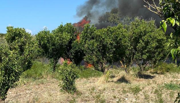 В Италии разбился туристический самолет, есть погибшие