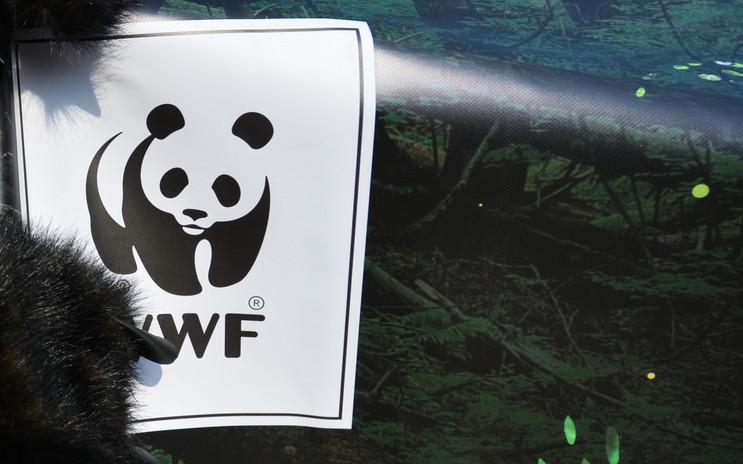 WWF «Жива планета»