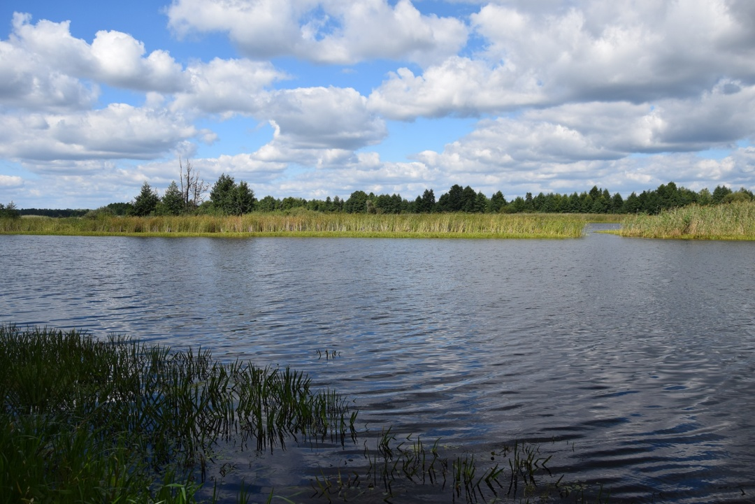 В Чернобыльской зоне появился первый веломаршрут