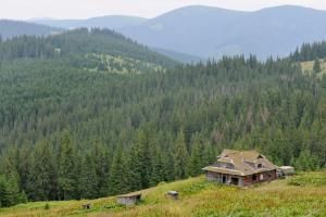 Кабмин одобрил ряд законопроектов о развитии Карпатского региона