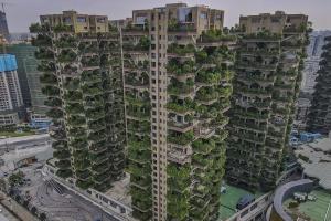 Китайський проект житла з лісом на балконі згубили комарі