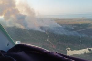 Лісова пожежа на Херсонщині: рятувальники продовжують гасити окремі осередки тління