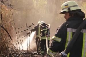 Пожар на свалке в Киеве: спасатели до сих пор тушат очаги тления